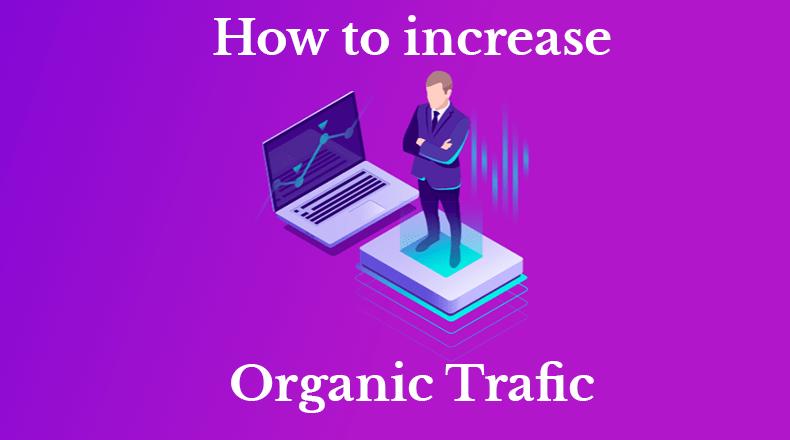 trafic organic