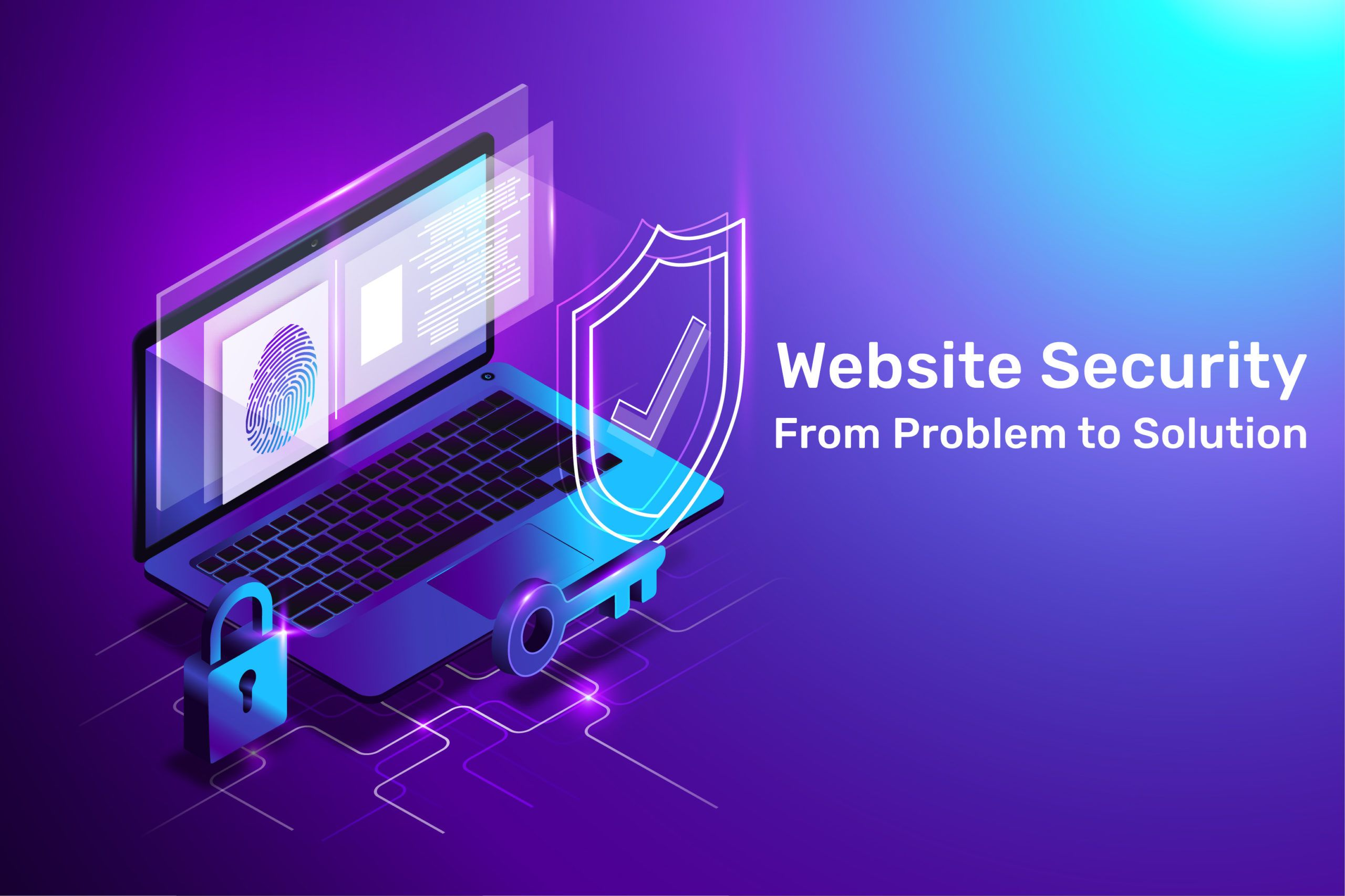 Website Security: The road from vulnerability to solution