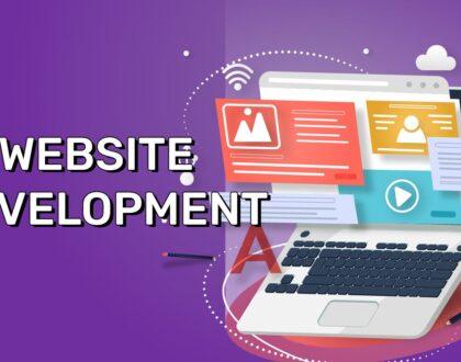 Website Development: When Do You Need A Custom Developed Website?